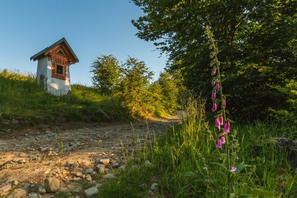 szlak-gorski-szczyrk-www.krokzahoryzont.pl
